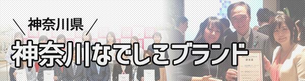 神奈川なでしこブランド女性起業家が作った商品・サービス